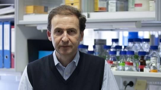 Nuevo proyecto para el diagnóstico temprano de la leucemia de células B